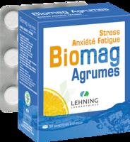 Lehning Biomag Comprimés à Croquer Agrumes B/90 à Paris