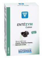 Entezym Cube à mâcher équilibre flore intestinale B/12 à Paris