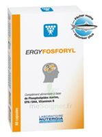 Ergyfosforyl Caps B/60 à Paris