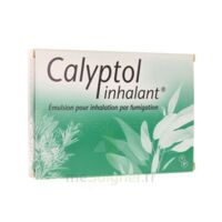 CALYPTOL INHALANT, émulsion pour inhalation par fumigation à Paris