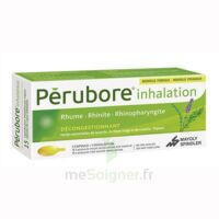 PERUBORE Caps inhalation par vapeur inhalation Plq/15 à Paris