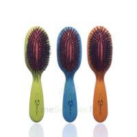 Cartel Brosse cheveux pneumatique Sanglier large à Paris