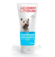 Clément Thékan Shampooing Poils Blancs T/200ml à Paris
