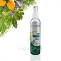 Naturactive Assaini'spray 200ml à Paris